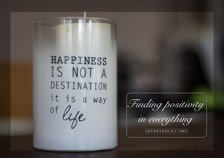 Finding the positivity ineverything
