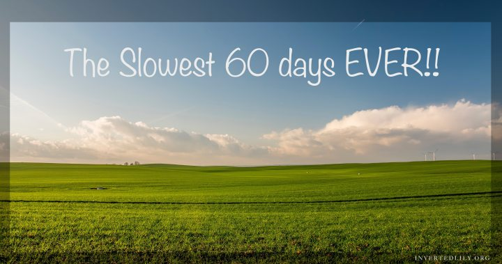 The slowest 60 days EVER!